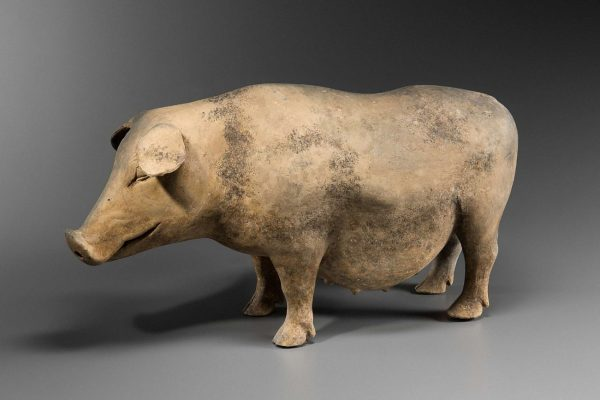 Earthenware pig